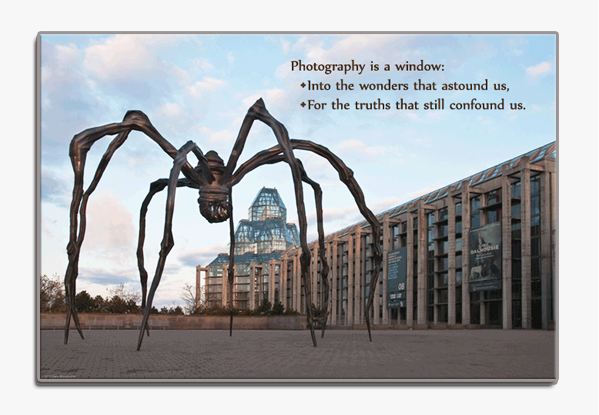 Spider Sculture outside National Art Gallery, Ottawa, Ontario, Canada